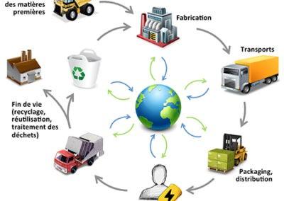 schema_Cycle de vie1